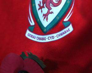 Chris Coleman defends FAW decision not to wear poppies as players pay respects