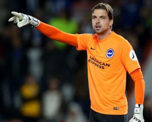 Tim Krul signs permanent Brighton deal