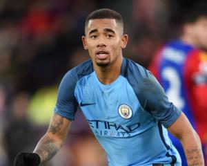 Gabriel Jesus will take time to settle at Manchester City - Fernandinho