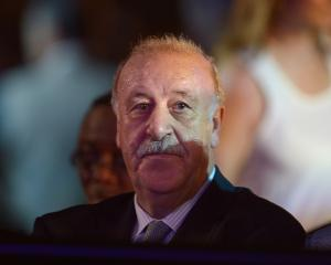 Vicente del Bosque hits out at Spain display despite win