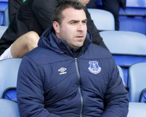 Everton V Norwich at Goodison Park : Match Preview