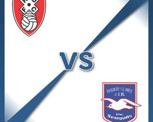 Rotherham V Brighton at The New York Stadium : Match Preview