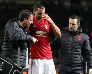 Ander Herrera backs Zlatan Ibrahimovic to recover from injury