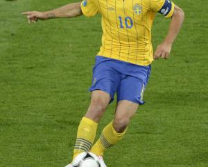 Ibrahimovic pledges future to Sweden