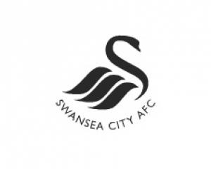Swansea 1-1 Man City: Match Report