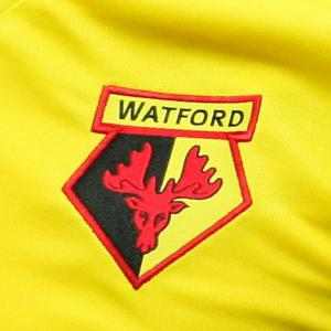Watford avoid fine or points deduction
