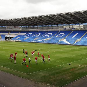 Dalman relishing new Bluebirds role