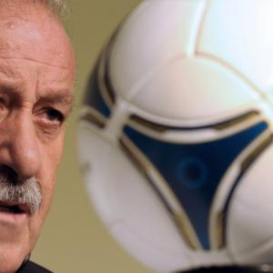 Del Bosque admits to France fears