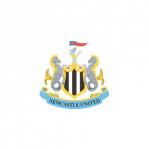 Newcastle United 1 Manchester United 2
