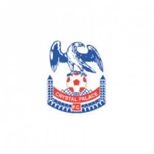 Palace turn to youth