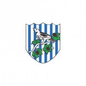 WBA-MAD Preview: Albion vs Norwich