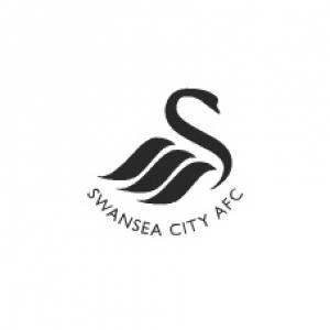 Swans in good shape