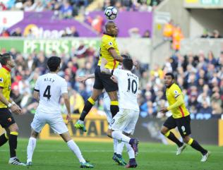 Swansea secure point against Watford in Bob Bradley's first home game at helm