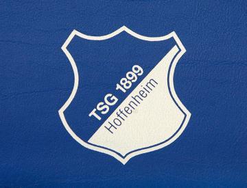 Hoffenheim owner Dietmar Hopp has faith in under-fire coach Markus Gisdol