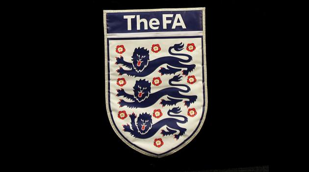 Johnson quits FA inclusion board