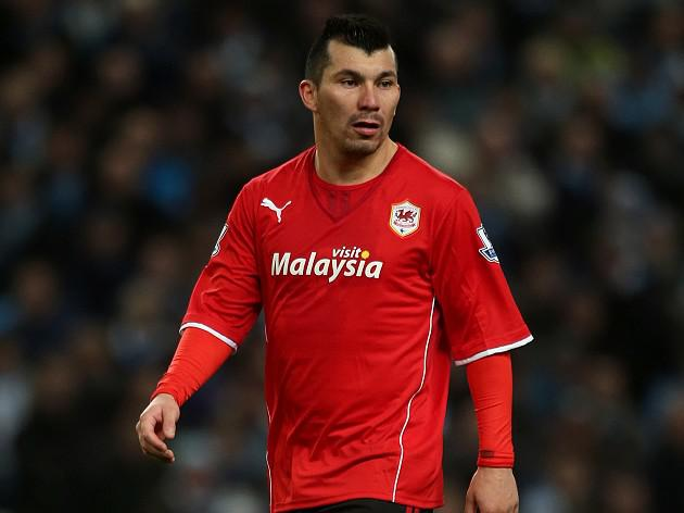 Injury blow for Cardiff's Gary Medel