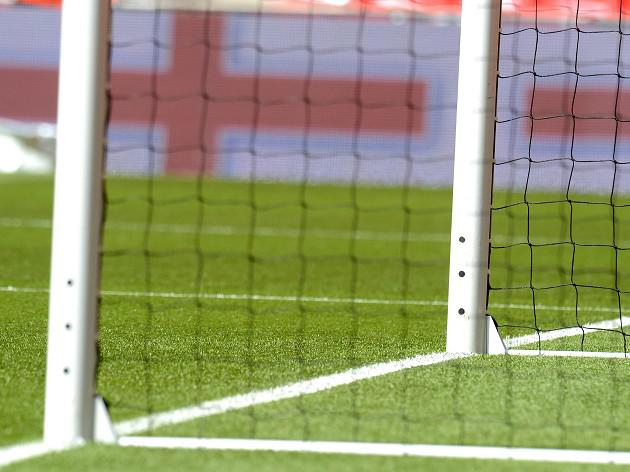 FA expecting goal-line go-ahead for Premier league next season