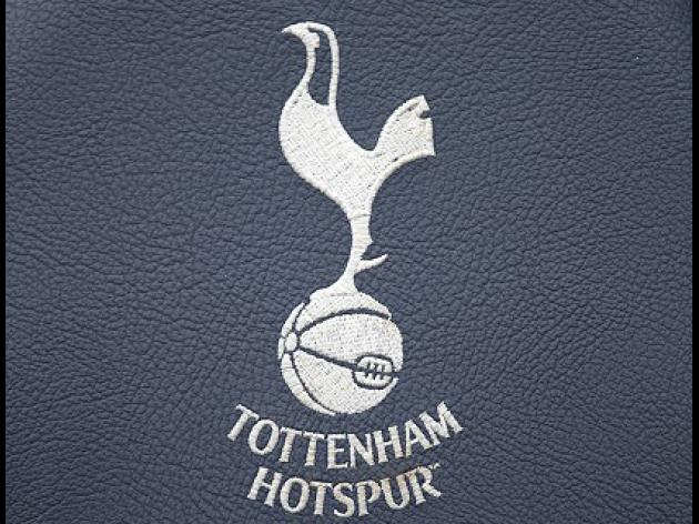Council welcome Spurs stadium plan