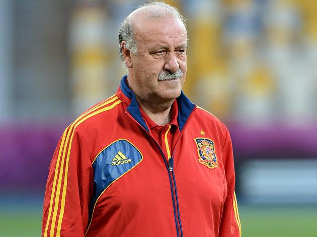 Del Bosque hails professional Spain