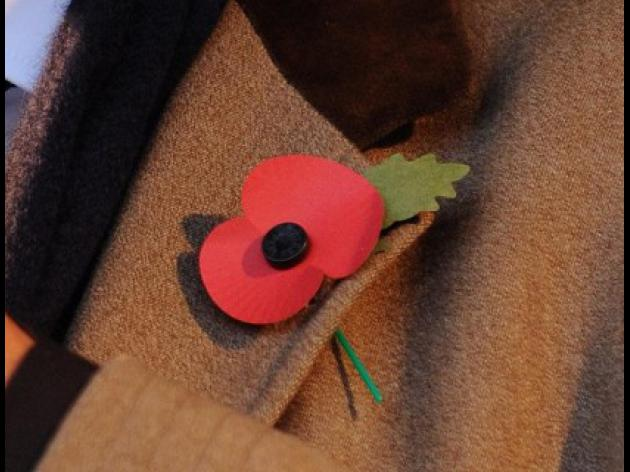 MP helped secure poppy resolution
