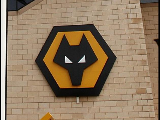 Wolves unveil new stadium plans