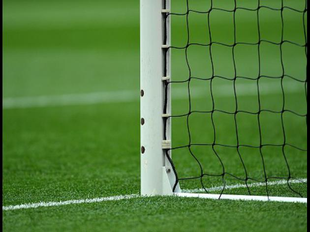 Goal-line technology likely next season
