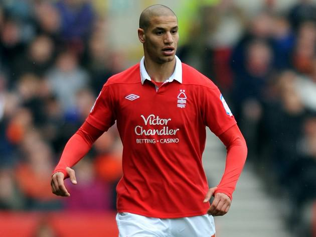 Palace snap up Guedioura from Forest