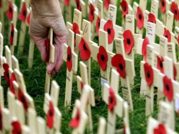 British PM wades into poppies row