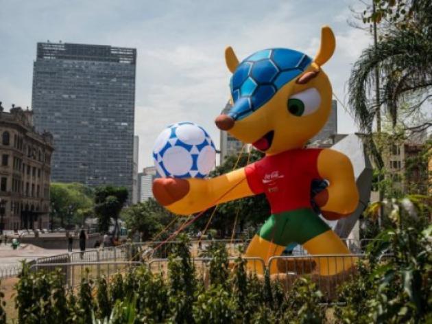 Tatu-bola, 2014 World Cup mascot, could vanish soon