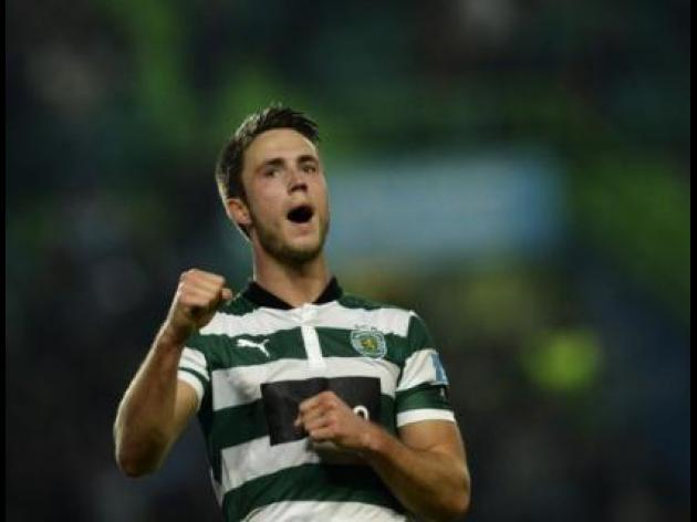 Hughton takes heat off Van Wolfswinkel expectations
