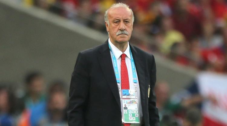Vicente del Bosque: David de Gea must play to earn place in Spain squad